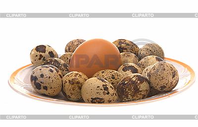 Jaja ptasie | Foto stockowe wysokiej rozdzielczości |ID 3080457