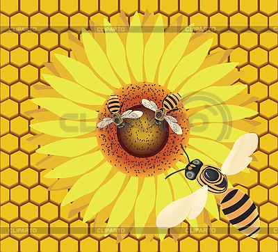 Raster-Illustration, fliegende Biene und Biene auf einer Blume auf dem ...