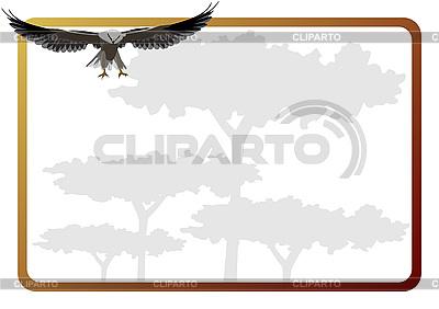 Flying Eagle i ramki | Klipart wektorowy |ID 3080901