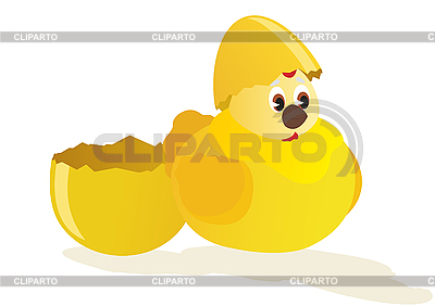 Küken und Ei | Stock Vektorgrafik |ID 3096959