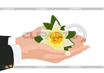 Kwiat w dłoni | Klipart wektorowy |ID 3105490