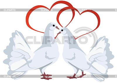 Dwa białe gołębie i serca | Klipart wektorowy |ID 3301666