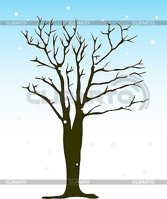 Winterbaum | Stock Vektorgrafik |ID 3087551