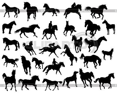 Silhouetten von Pferden | Stock Vektorgrafik |ID 3108001