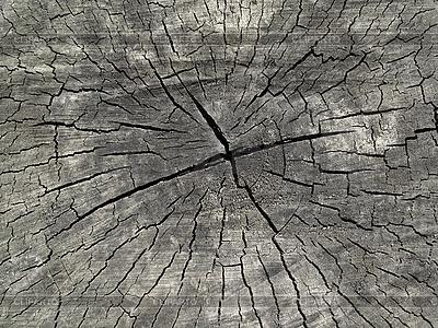 Alte Holztextur | Foto mit hoher Auflösung |ID 3089280