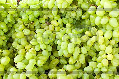 Zielone winogrona | Foto stockowe wysokiej rozdzielczości |ID 3092980