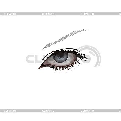 Linkes Frauen-Auge | Stock Vektorgrafik |ID 3095725