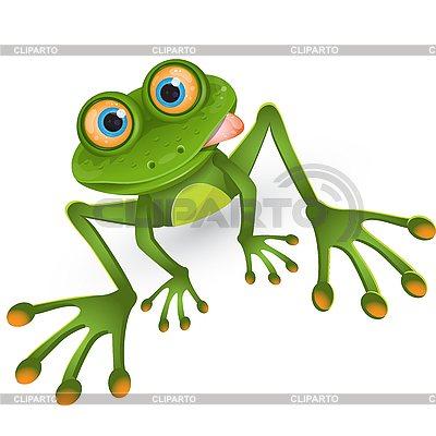 Frosch Cartoon | Stock Vektorgrafik |ID 3096363
