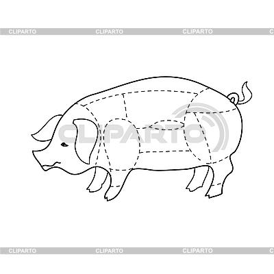 Схема разделки свиньи - ©
