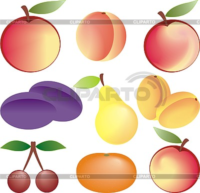 Owoce | Klipart wektorowy |ID 3102296