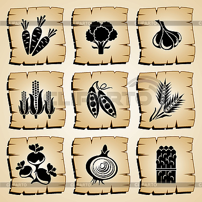 Gemüse-Icons | Stock Vektorgrafik |ID 3108926