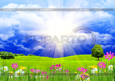 Grünes Gras und blauer Himmel | Illustration mit hoher Auflösung |ID 3112653