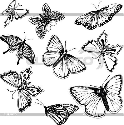 клипарт бабочки вектор: