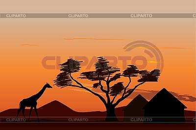Sunset in Africa | Stockowa ilustracja wysokiej rozdzielczości |ID 3113747