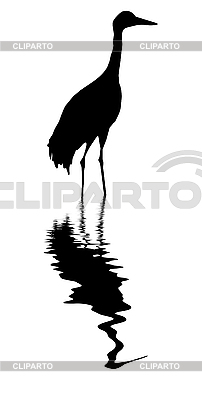 Żuraw wśród wody | Klipart wektorowy |ID 3202665