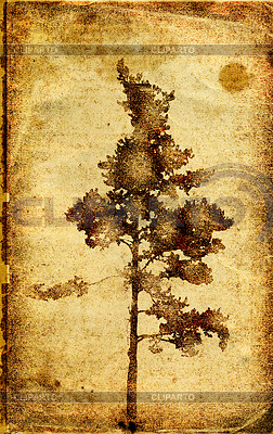 Grunge-Hintergrund mit einem Baum | Stock Vektorgrafik |ID 3231714