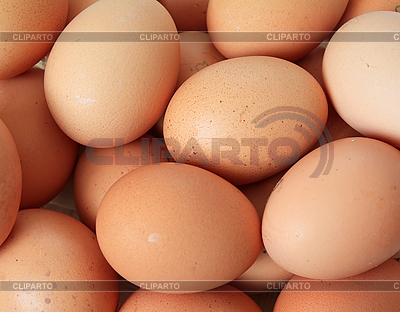 Группа коричневых куриных яиц | Фото большого размера |ID 3255840