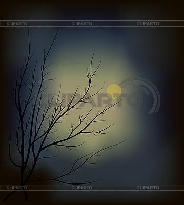 Dunkles Wald und Mond | Stock Vektorgrafik |ID 3142239