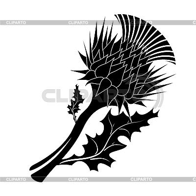 Dekoracyjne oset | Klipart wektorowy |ID 3142225