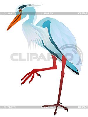 Цапля | Фото большого размера и векторный клипарт | CLIPARTO