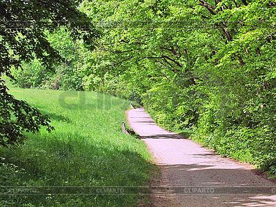 Weg im Park | Foto mit hoher Auflösung |ID 3156222