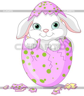 Wielkanoc Dziecko króliczek wykluły się z jednego jaja | Klipart wektorowy |ID 3199656
