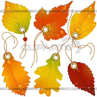 клипарт листья осенние: