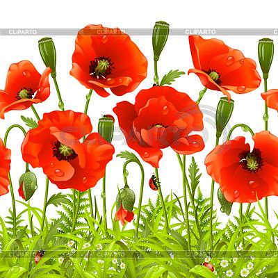 红色的花朵和绿色的草地 | 向量插图 |ID 3230098