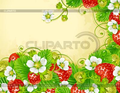 Клубничная рамка - красные ягоды и белые цветки | Векторный клипарт |ID 3235606