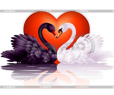 Dwa wdzięczne łabędzie w miłości | Klipart wektorowy |ID 3293936