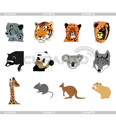 Set von verschiedenen Tieren des Waldes | Stock Vektorgrafik |ID 3234812