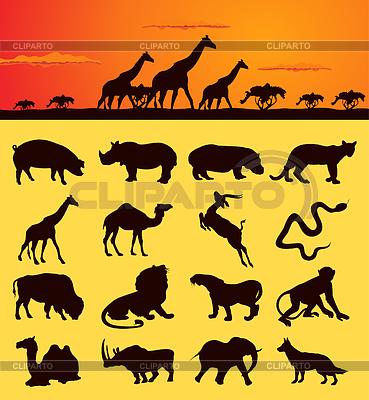 Afrykańskich zwierząt | Klipart wektorowy |ID 3257459