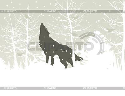 Оскал волки фото