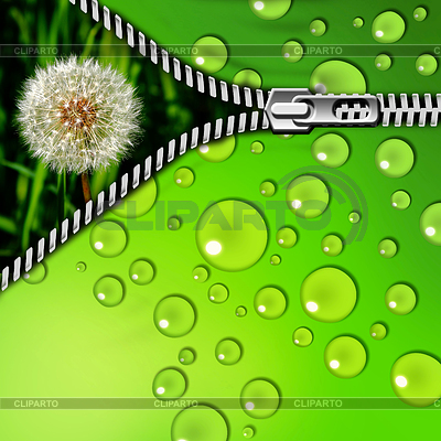 http://img.cliparto.com/pic/xl/198038/3367232-dandelion-in-grass-and-zipper.jpg