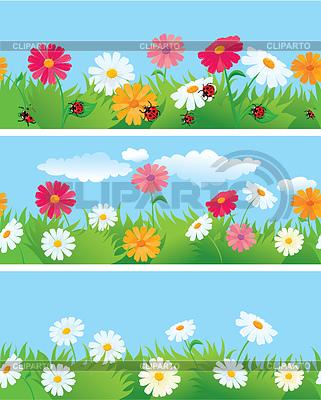 데이지 꽃과 잔디 원활한 테두리 | 벡터 클립 아트 |ID 3340659