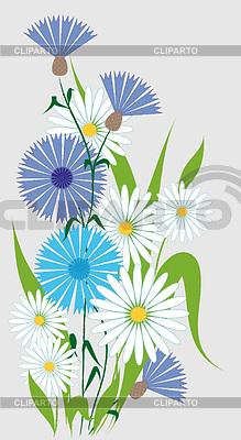 Полевые цветы векторный клипарт id