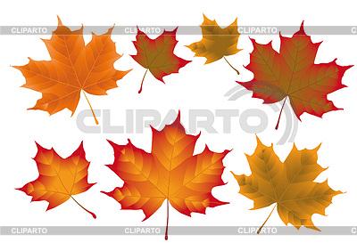 Загрузите потрясающие бесплатные изображения о осенний лист. Бесплатно для коммерческого использования ✓ указание авторства не требуется.