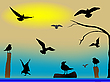 Vector clipart: birds paradise