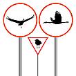 Vector clipart: birds traffic sign