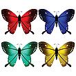 Vector clipart: bright butterflies