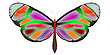 Vector clipart: butterfly 3