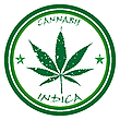 cannabis stamp against white