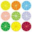 Vector clipart: citrus collection
