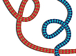 Vector clipart: climbing rope