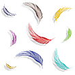 Vector clipart: colored feathers collection
