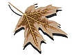 Vector clipart: dry leaf against white
