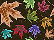 Vector clipart: dry leaves seamless pattern