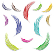 Vector clipart: feathers in colors