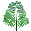 Vector clipart: green bush against white