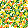 Vector clipart: oranges and lemons pattern